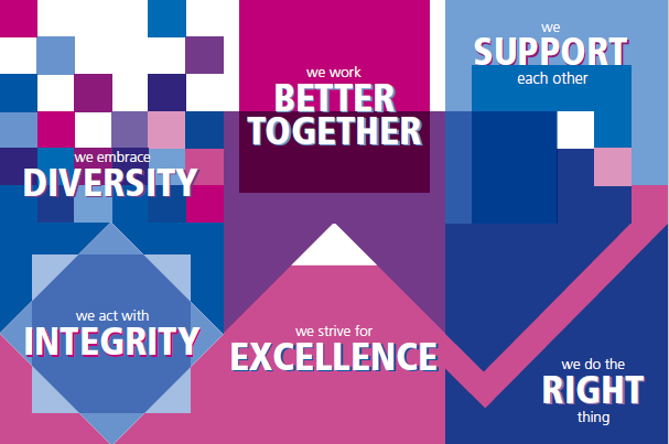 we embrace diversity, we work better together, we support each other, we act with integrity, we strive for excellence, we do the right thing
